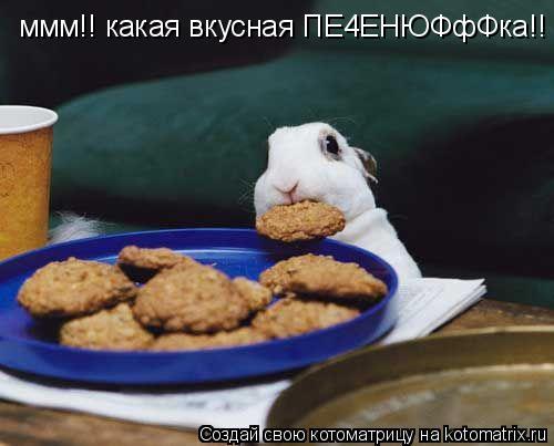 Котоматрица: ммм!! какая вкусная ПЕ4ЕНЮФфФка!!