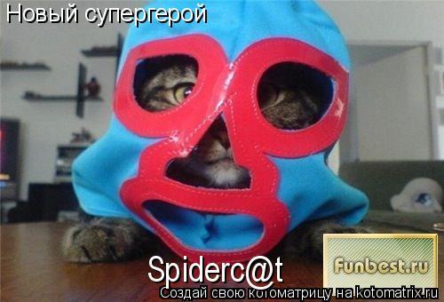 Котоматрица: Новый супергерой Spiderc@t