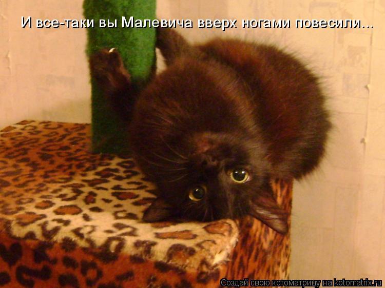 Котоматрица: И все-таки вы Малевича вверх ногами повесили... И все-таки вы Малевича вверх ногами повесили...