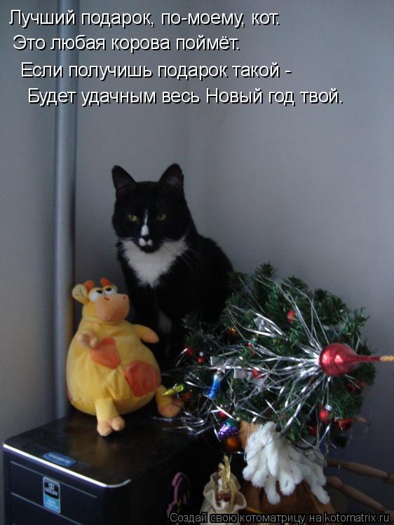 Котоматрица: Это любая корова поймёт. Лучший подарок, по-моему, кот. Если получишь подарок такой - Будет удачным весь Новый год твой.