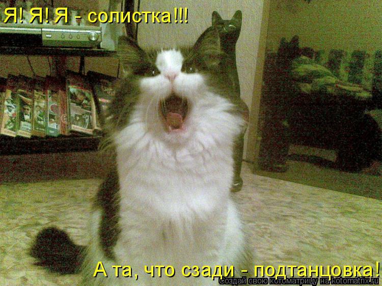 Котоматрица: Я! Я! Я - солистка!!! А та, что сзади - подтанцовка!