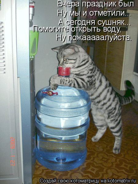 Котоматрица: Вчера праздник был Ну мы и отметили... А сегодня сушняк... Помогите открыть воду, Ну пожааааалуйста.