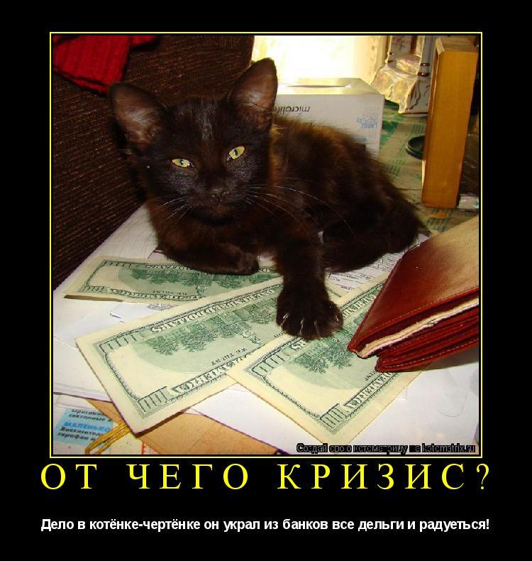 Котоматрица: От чего кризис? Дело в котёнке-чертёнке он украл из банков все дельги и радуеться!