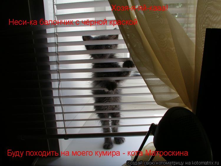 Котоматрица: Хозя-я-яй-кааа! Неси-ка балончик с чёрной краской Буду походить на моего кумира - кота Матроскина