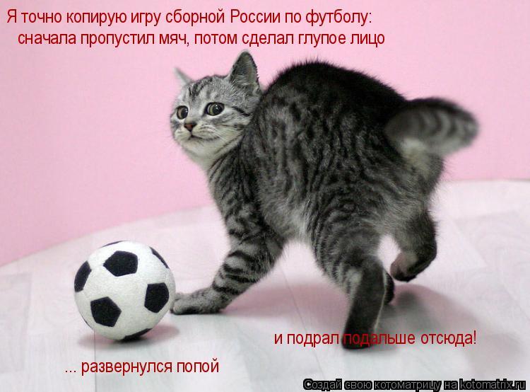 Котоматрица: Я точно копирую игру сборной России по футболу: сначала пропустил мяч, потом сделал глупое лицо ... развернулся попой и подрал подальше отсю