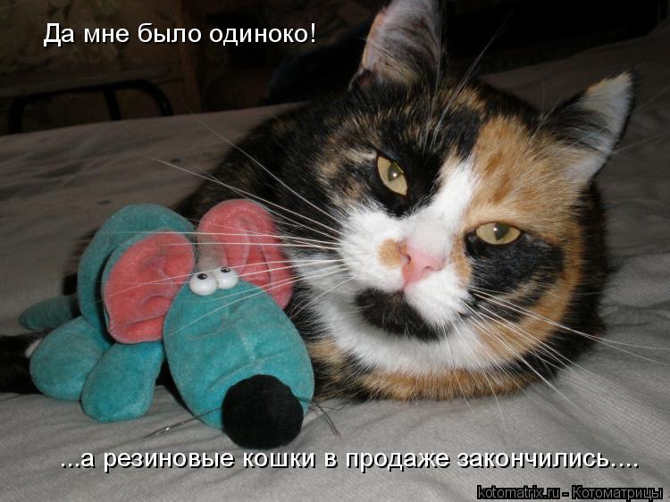 Котоматрица: Да мне было одиноко!   ...а резиновые кошки в продаже закончились....