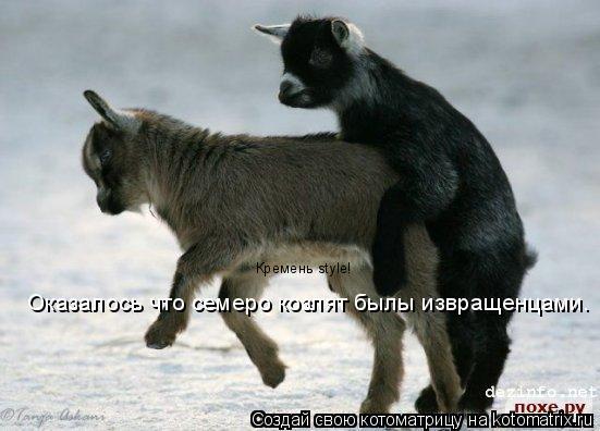 Котоматрица: Оказалось что семеро козлят былы извращенцами. Кремень style!
