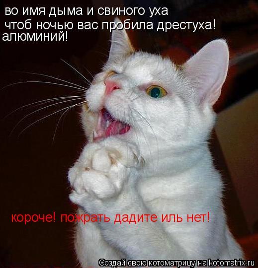 Котоматрица: во имя дыма и свиного уха чтоб ночью вас пробила дрестуха! алюминий! короче! пожрать дадите иль нет!