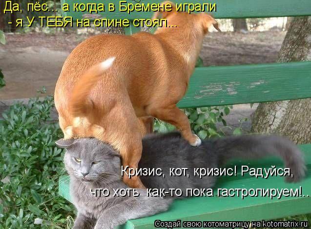 Котоматрица: Да, пёс... а когда в Бремене играли  - я У ТЕБЯ на спине стоял... Кризис, кот, кризис! Радуйся, что хоть  как-то пока гастролируем!..