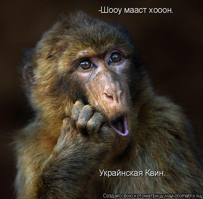 Котоматрица: -Шооу мааст хооон. Украйнская Квин.