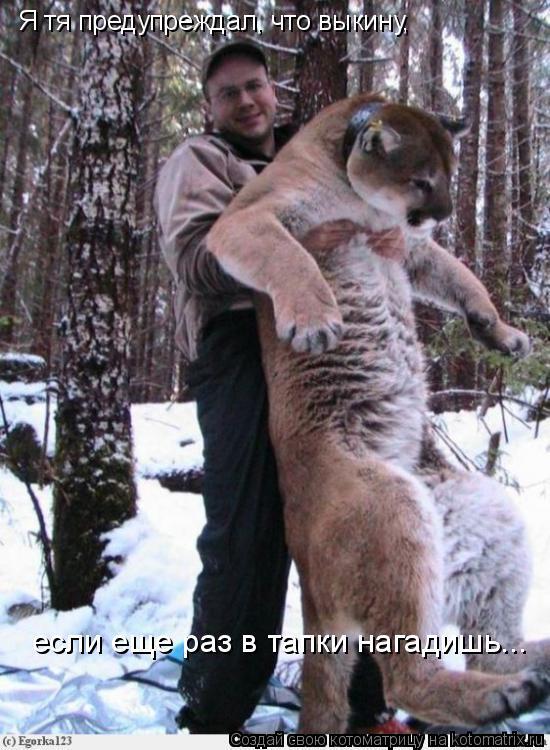http://kotomatrix.ru/images/lolz/2009/08/12/339070.jpg