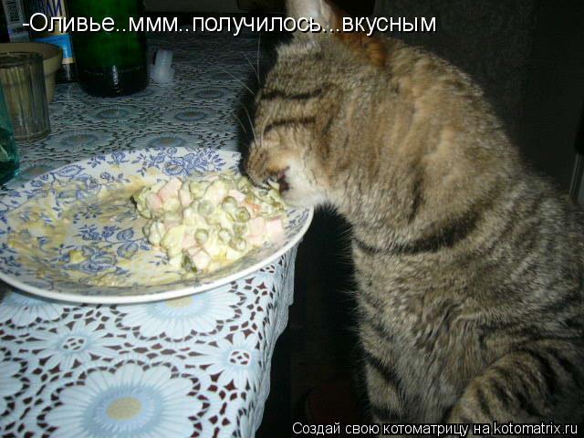 Котоматрица: -Оливье..ммм..получилось...вкусным