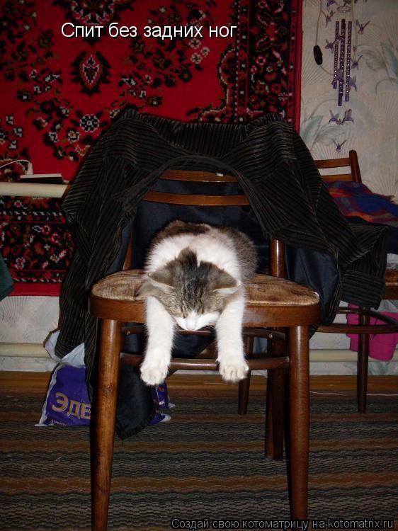 Котоматрица: Спит без задних ног