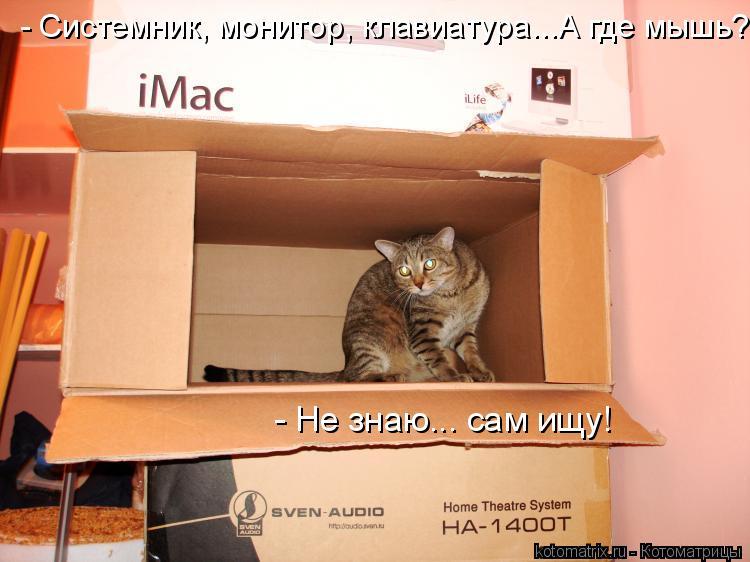 Котоматрица: - Не знаю... сам ищу!  - Системник, монитор, клавиатура...А где мышь?