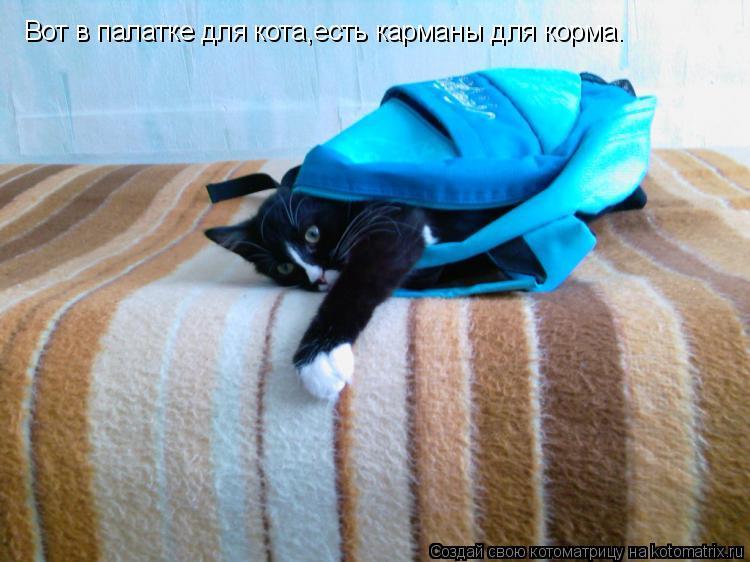 Котоматрица: Вот в палатке для кота,есть карманы для корма.