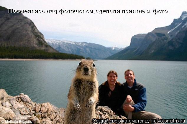 Котоматрица: Посмеялись над фотошопом,сделали приятным фото.