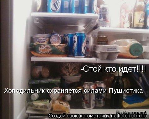Котоматрица: -Стой кто идет!!!! Холодильник охраняется силами Пушистика.