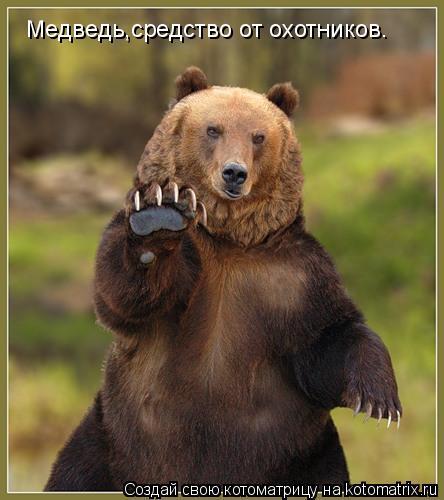 Котоматрица: Медведь,средство от охотников.