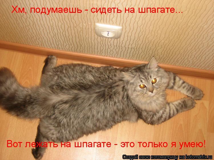 http://kotomatrix.ru/images/lolz/2009/08/12/339374.jpg
