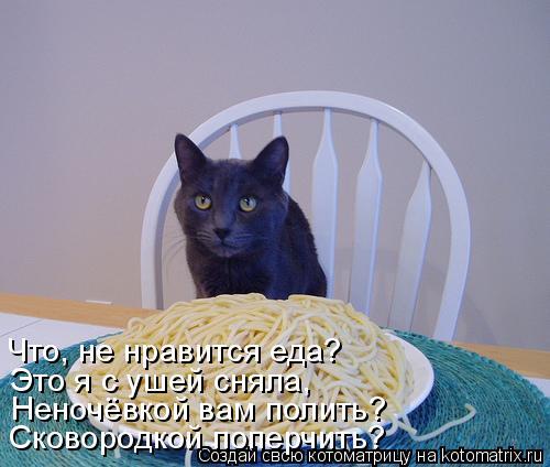 Котоматрица: Что, не нравится еда? Это я с ушей сняла, Неночёвкой вам полить? Сковородкой поперчить?