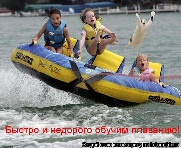 Котоматрица: Быстро и недорого обучим плаванию!