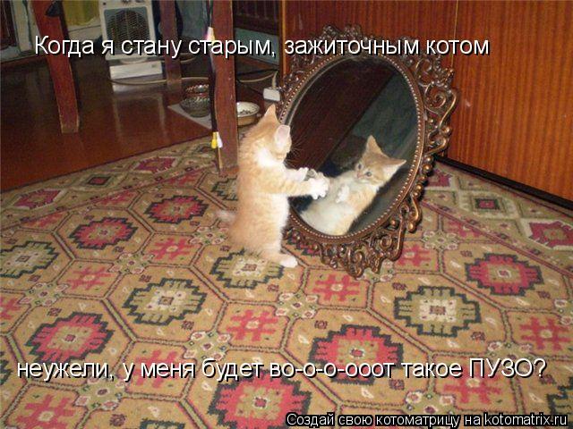 http://kotomatrix.ru/images/lolz/2009/08/12/339416.jpg