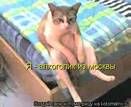 Котоматрица: Я - алкоголик из москвы