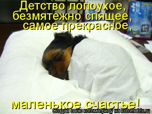 Котоматрица: Детство лопоухое, безмятежно спящее, самое прекрасное, маленькое счастье!