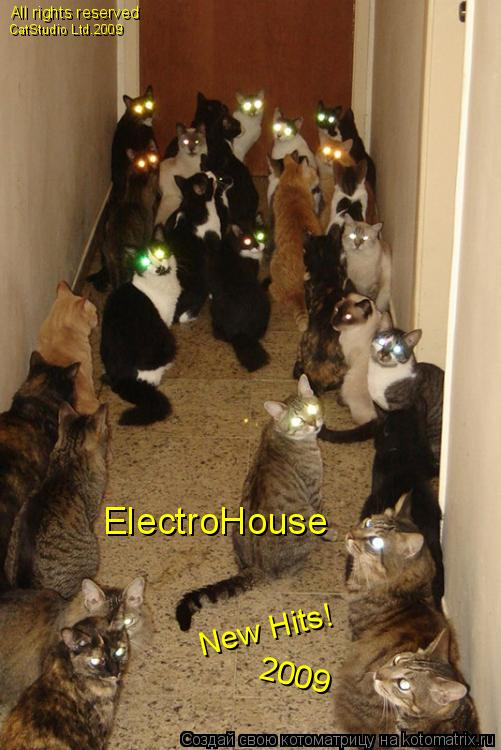Котоматрица: ElectroHouse New Hits!  2009 All rights reserved CatStudio Ltd.2009