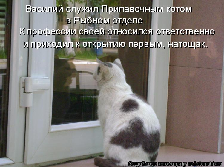 http://kotomatrix.ru/images/lolz/2009/08/12/339453.jpg