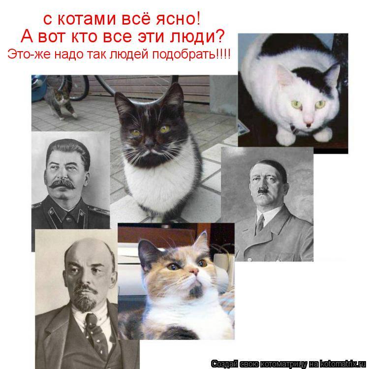Котоматрица: с котами всё ясно! А вот кто все эти люди? Это-же надо так людей подобрать!!!!