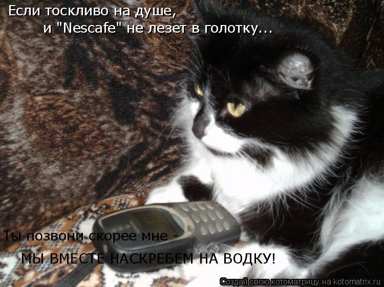"""Котоматрица: Если тоскливо на душе, и """"Nescafe"""" не лезет в голотку... Ты позвони скорее мне - МЫ ВМЕСТЕ НАСКРЕБЕМ НА ВОДКУ!"""
