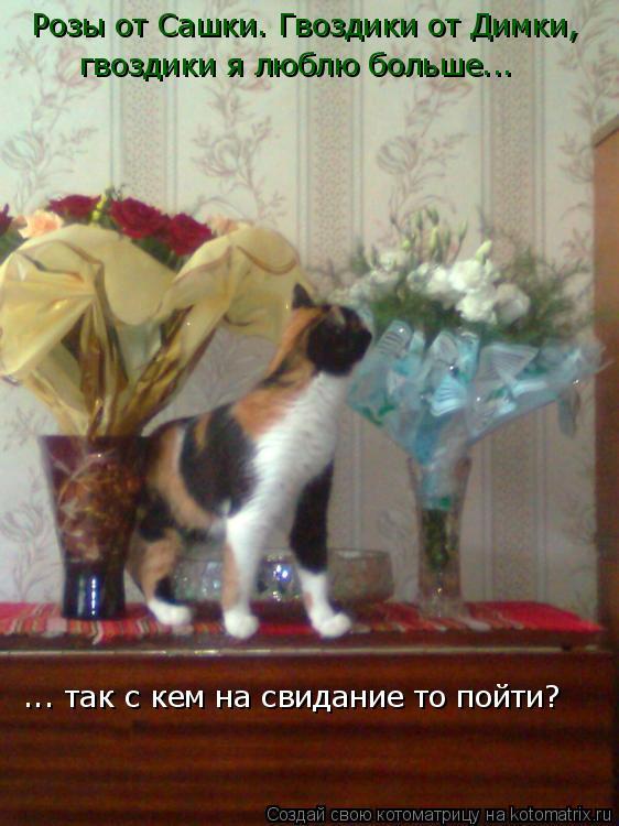 Котоматрица: Розы от Сашки. Гвоздики от Димки,  гвоздики я люблю больше... ... так с кем на свидание то пойти?