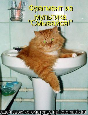 """Котоматрица: Фрагмент из мультика """"Смывайся!"""""""