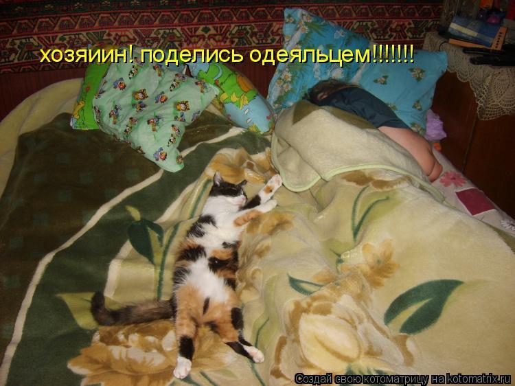 Котоматрица: хозяиин! поделись одеяльцем!!!!!!!