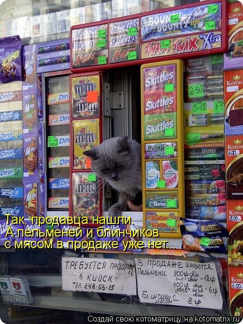 Котоматрица: А пельменей и блинчиков  с мясом в продаже уже нет... Так, продавца нашли.