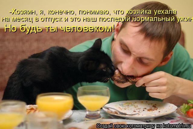 Котоматрица: -Хозяин, я, конечно, понимаю, что хозяйка уехала  на месяц в отпуск и это наш последий нормальный ужин! Но будь ты человеком!