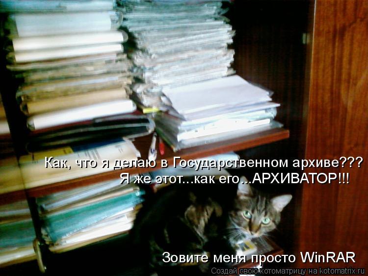 Котоматрица: Как, что я делаю в Государственном архиве??? Я же этот...как его...АРХИВАТОР!!!  Зовите меня просто WinRAR