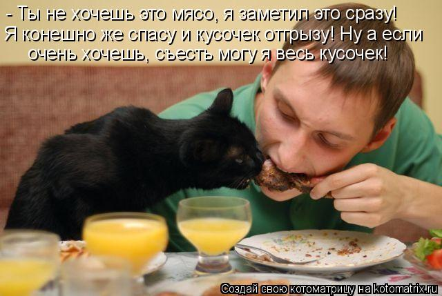 Котоматрица: - Ты не хочешь это мясо, я заметил это сразу! Я конешно же спасу и кусочек отгрызу! Ну а если очень хочешь, съесть могу я весь кусочек!