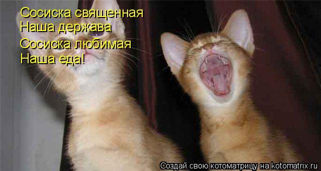 Котоматрица: Сосиска священная Наша держава Сосиска любимая Наша еда!