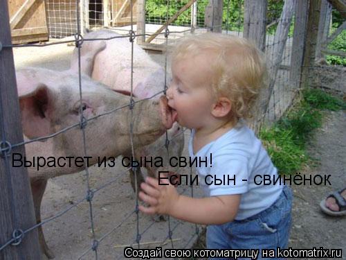 Котоматрица: Вырастет из сына свин! Если сын - свинёнок