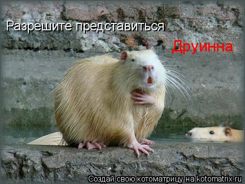 http://kotomatrix.ru/images/lolz/2009/08/13/339920.jpg