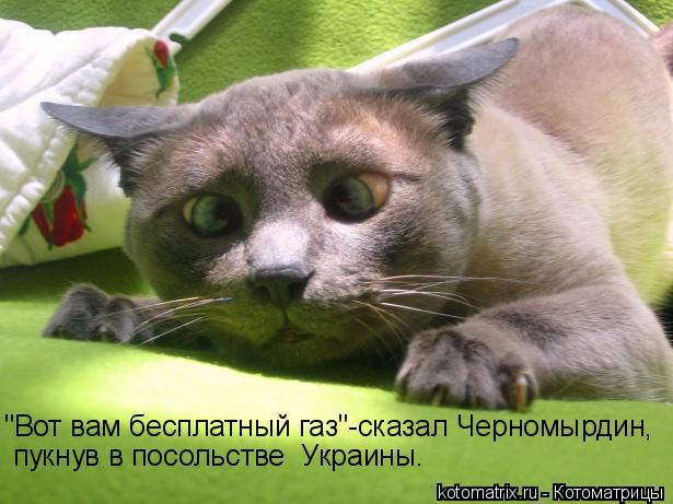 http://kotomatrix.ru/images/lolz/2009/08/13/339942.jpg