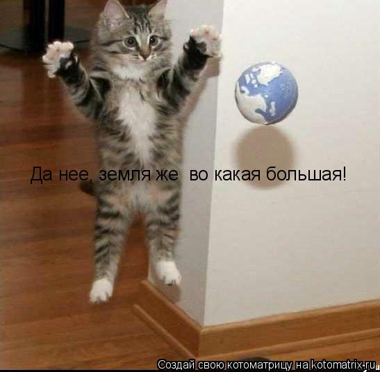 Котоматрица: Да нее, земля же  во какая большая!