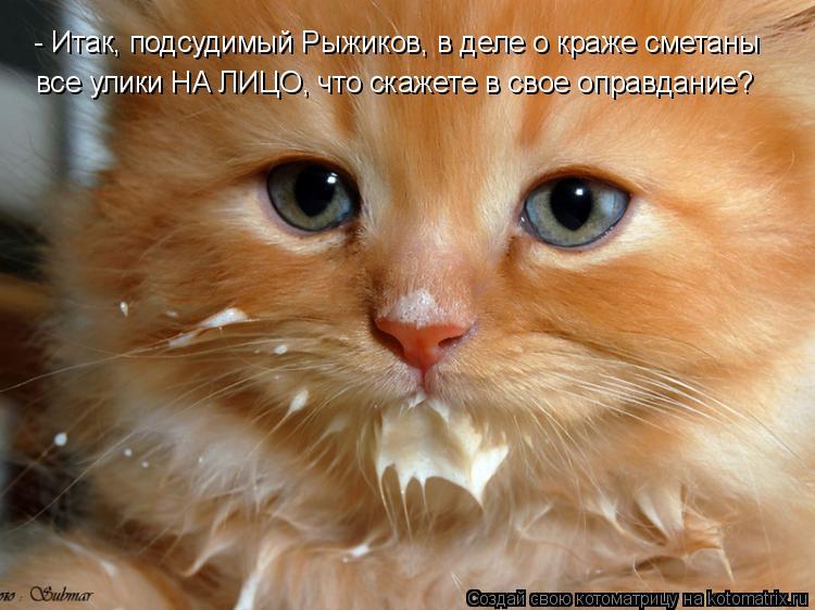 Котоматрица: - Итак, подсудимый Рыжиков, в деле о краже сметаны  все улики НА ЛИЦО, что скажете в свое оправдание?