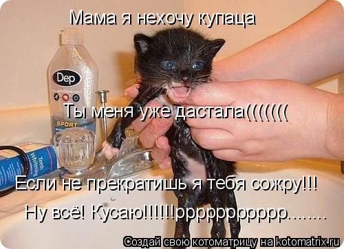 Котоматрица: Мама я нехочу купаца  Ты меня уже дастала((((((( Если не прекратишь я тебя сожру!!!  Ну всё! Кусаю!!!!!!ррррррррррр........