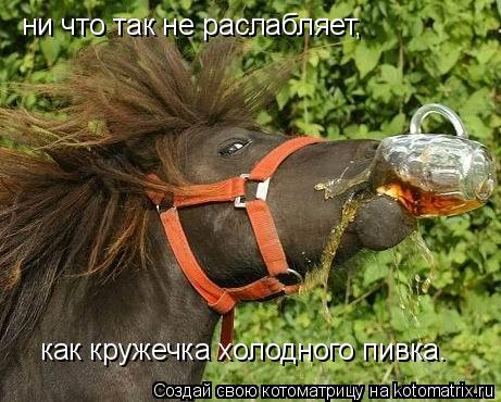 http://kotomatrix.ru/images/lolz/2009/08/13/340027.jpg