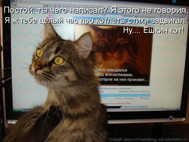 Котоматрица: Постой, ты чего написал? Я этого не говорил,  Я ж тебе целый час про котлеты стихи задвигал! Ну.... Ешкин кот!