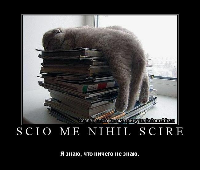 Котоматрица: Scio me nihil scire Я знаю, что ничего не знаю.