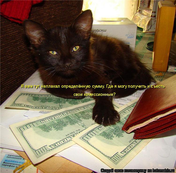 Котоматрица: Я вам тут наплакал определённую сумму. Где я могу получить и съесть  свои комиссионные?